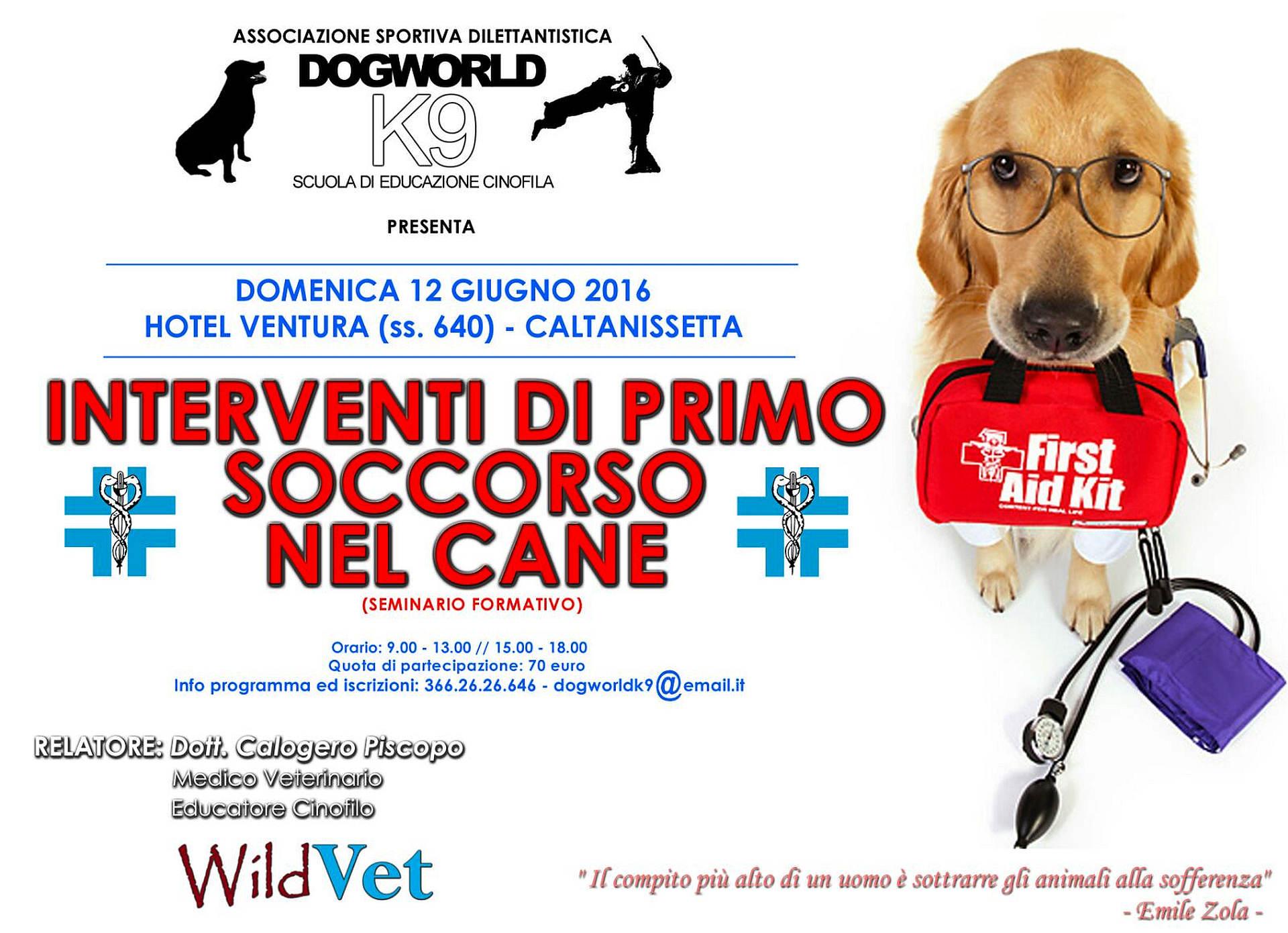 """Il seminario """"Interventi di primo soccorso nel cane"""" si terrà domenica prossima a Caltanissetta"""