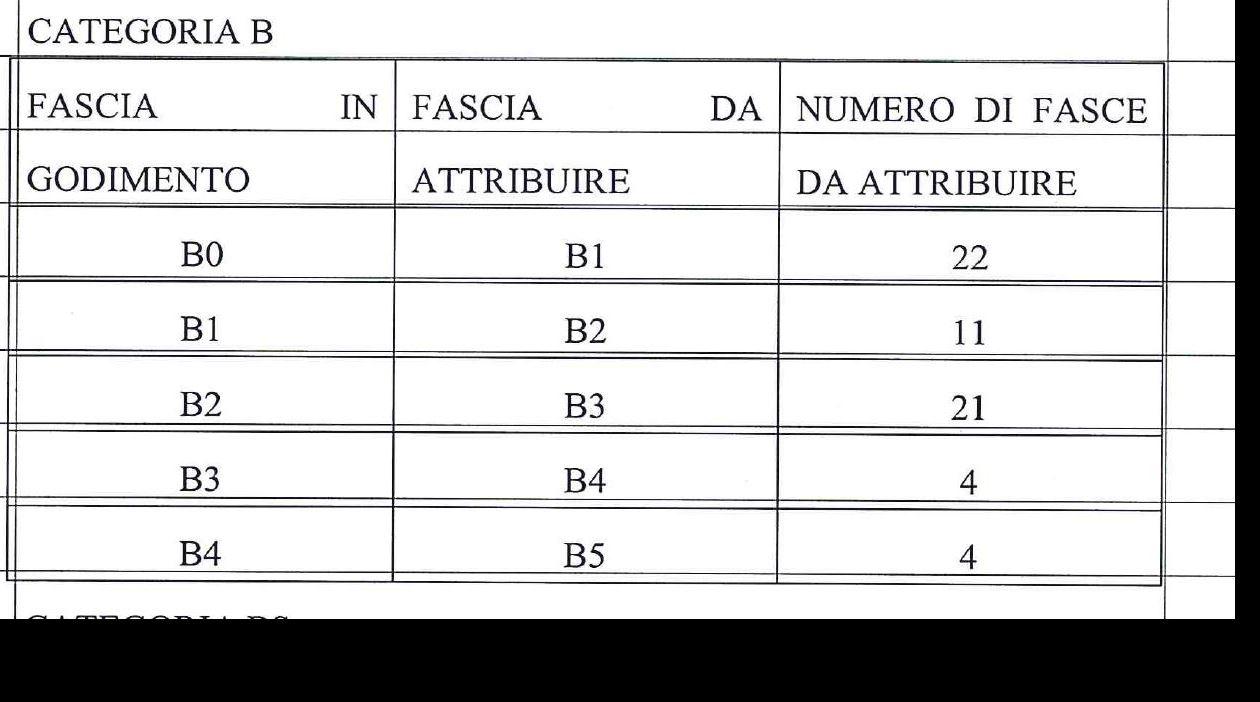 Categoria B (62)