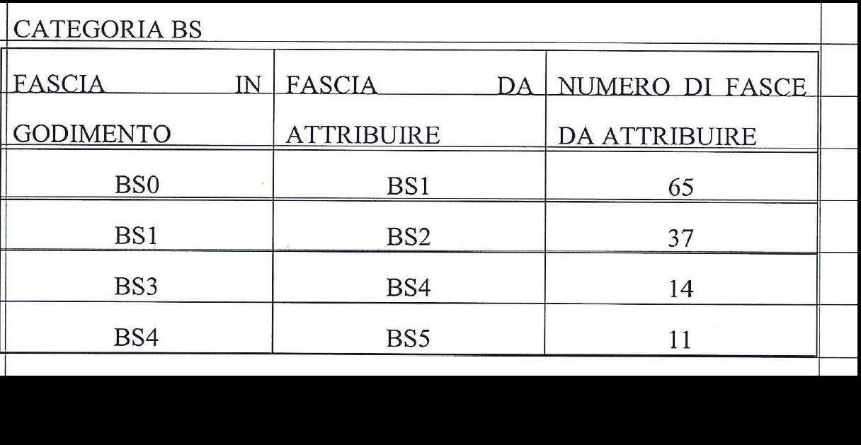Categoria BS (127)
