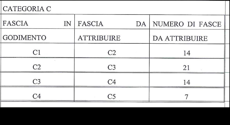 Categoria C (56)