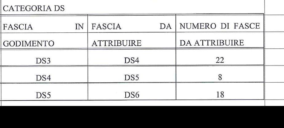 Categoria DS (48)