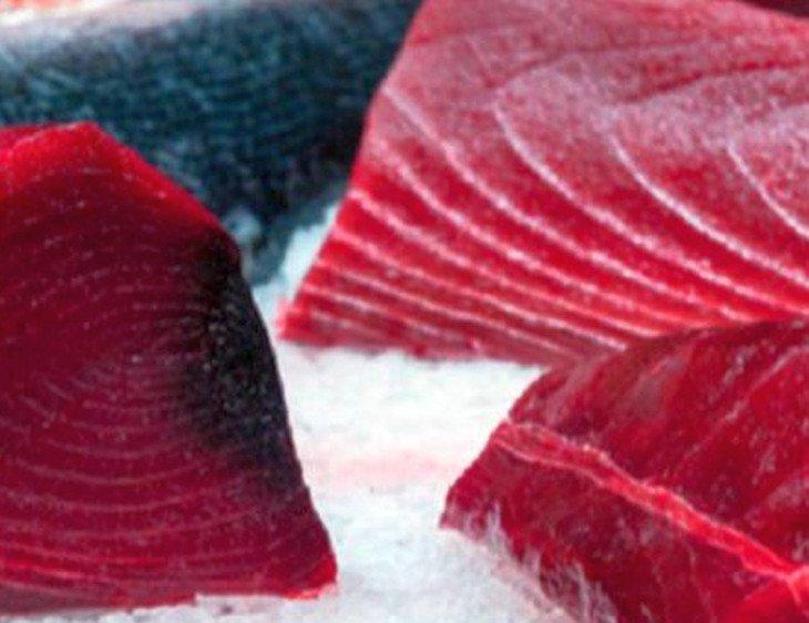 tonno rosso